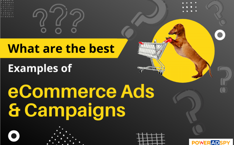 14-eCommerce-Ads-Example-You-Can-Copy-Now
